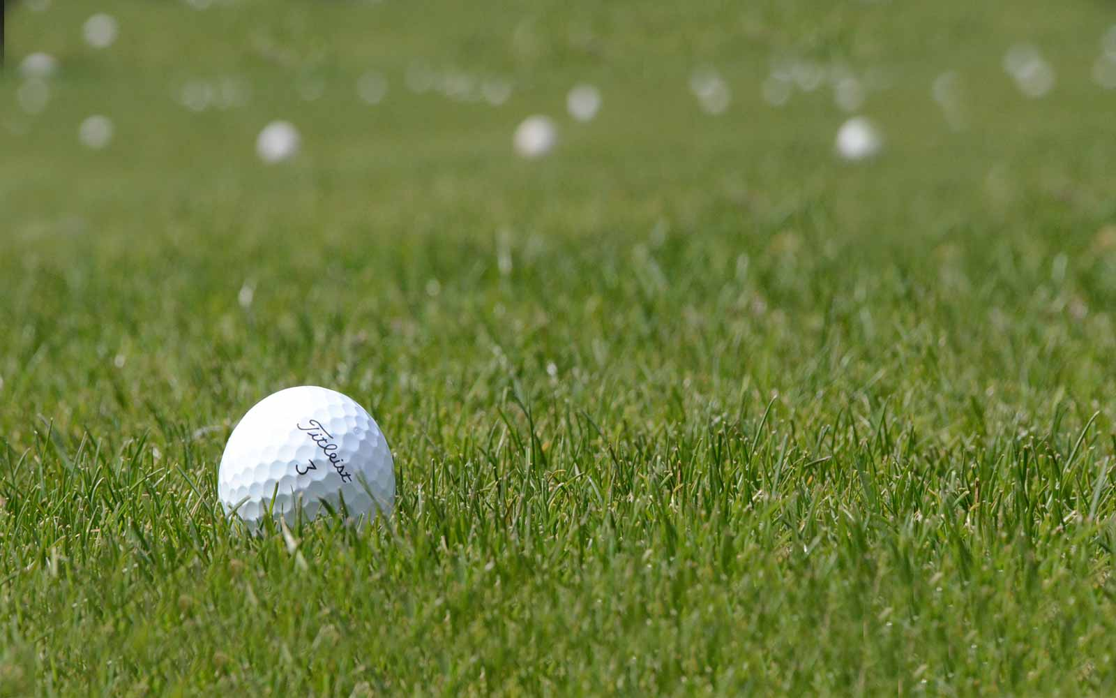 Best Golf Courses in Kansas City, Missouri