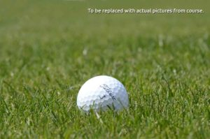 Best Golf Courses in Kansas City, Missouri