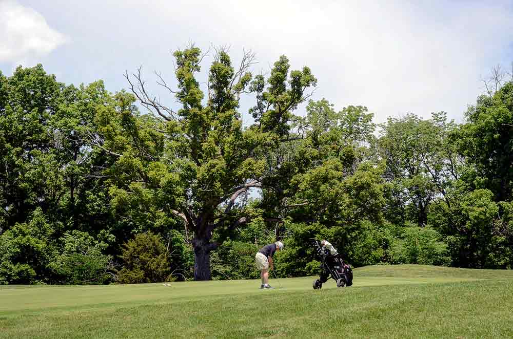 A  L  Gustin Golf Course   Best Golf Courses in Columbia