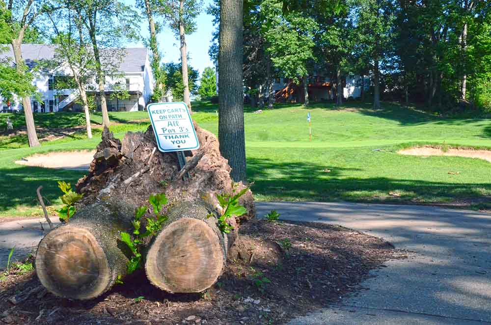 Bear-Creek-Golf-Club,-Wentzville,-MO-Stump