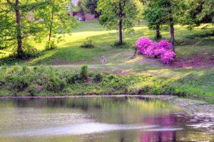 Bent Creek Golf Course, Golf Courses in Jackson, Missouri