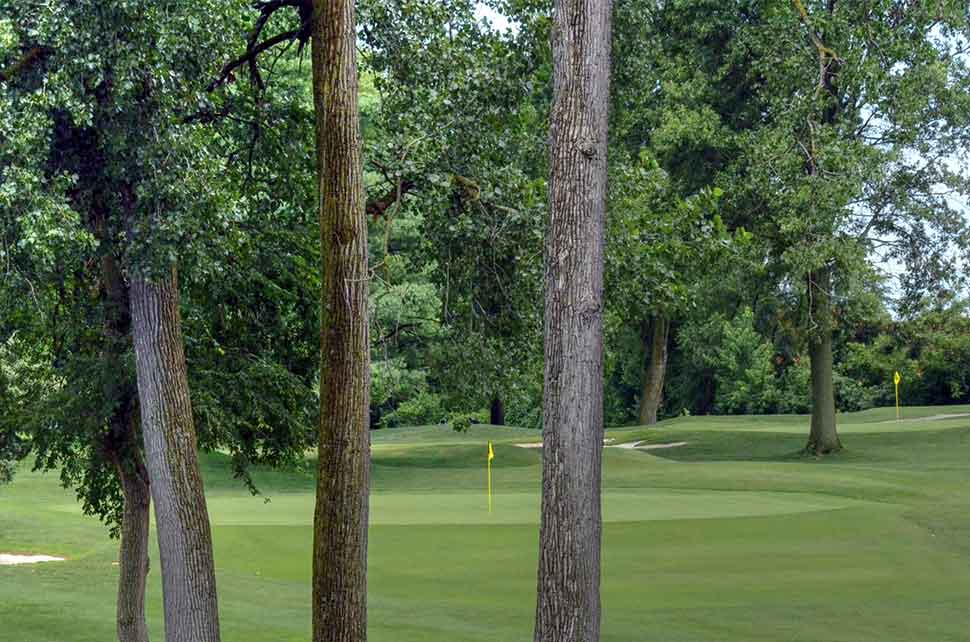 Bogey-Hills-Country-Club,-St-Charles,-MO-Trees