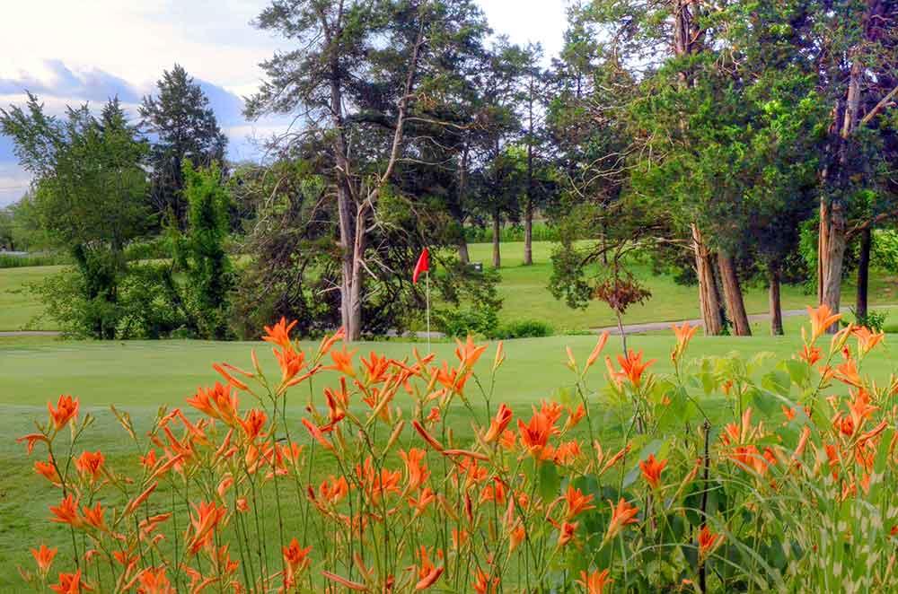 Country-Lake-Golf-Club,-Warrenton,-MO-Flowers