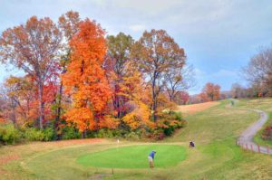 Crescent Farms Golf Club - Colt Executive | Golf Courses in St. Louis