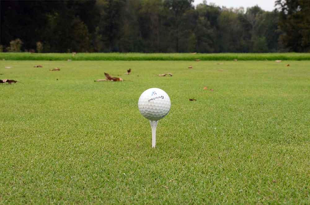 Dalhousie-Golf-Club,-Cape-Girardeau,-MO-BentGrass-Tee-Box