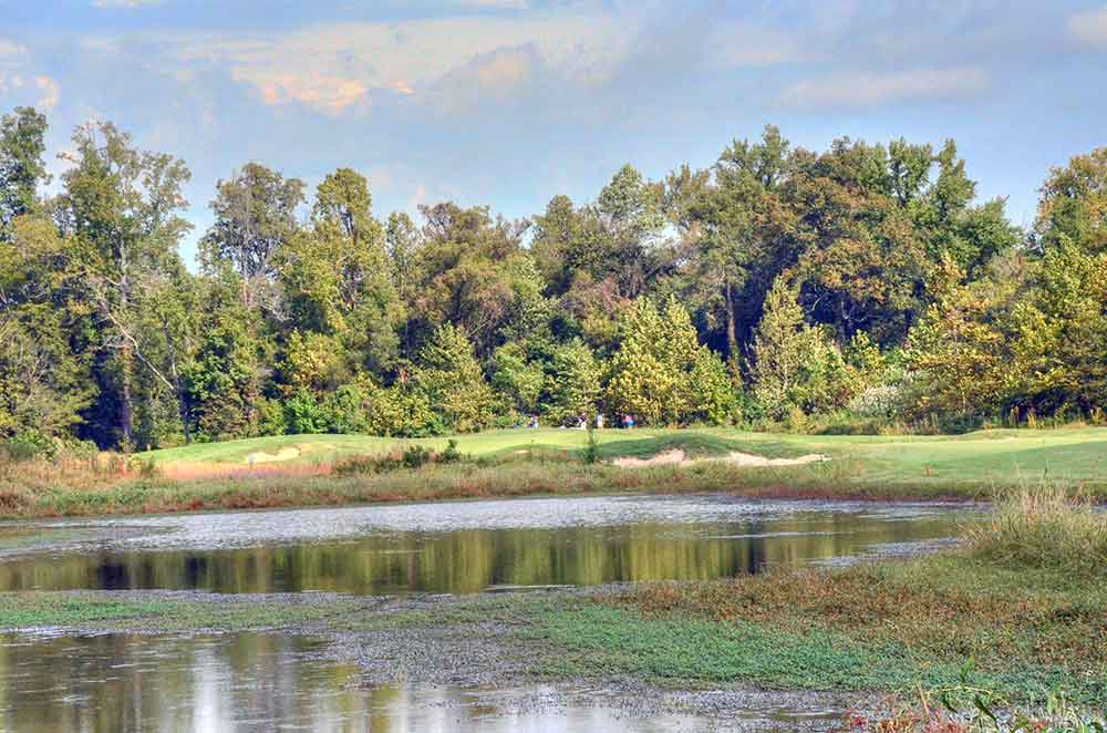 Dalhousie-Golf-Club,-Cape-Girardeau,-MO-Lillies