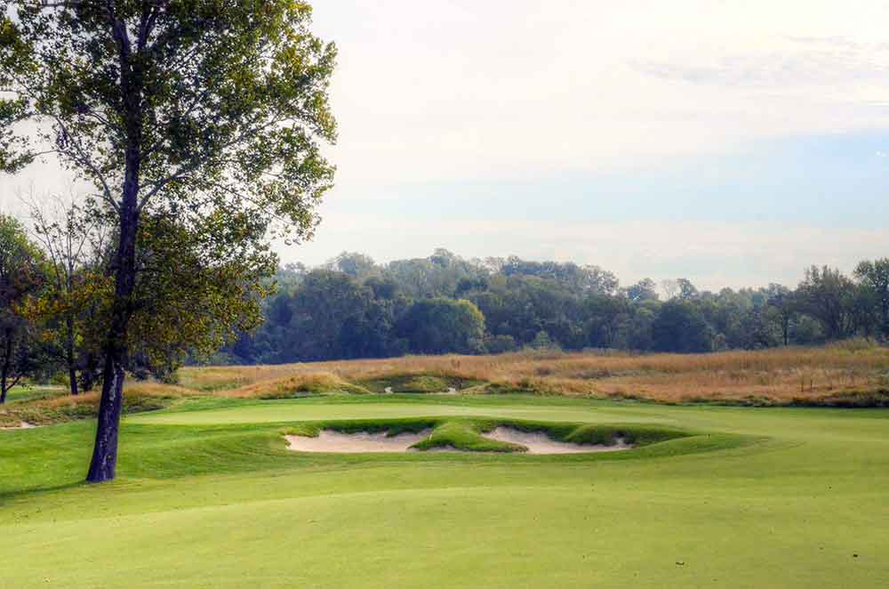 Dalhousie-Golf-Club,-Cape-Girardeau,-MO-Tree
