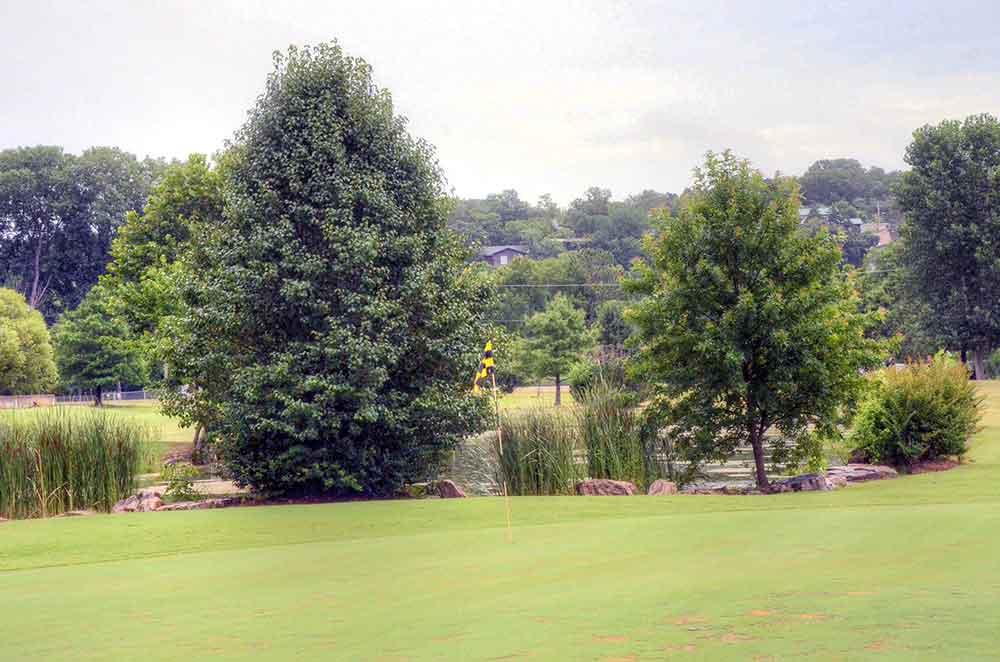 Don gardner branson mo 3 missouri golf tour for Gardner golf course