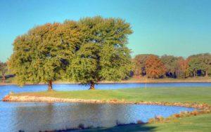 Higginsville Country Club, Golf Courses in Higginsville, Missouri