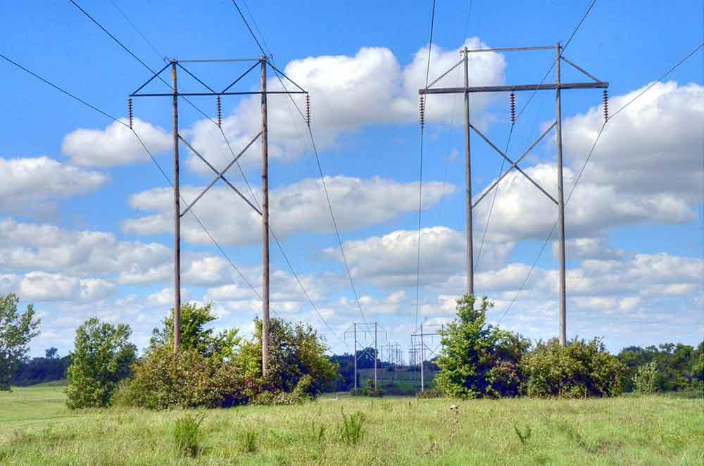 Hoot's-Hollow,-Pleasant-Hill,-MO-Poles