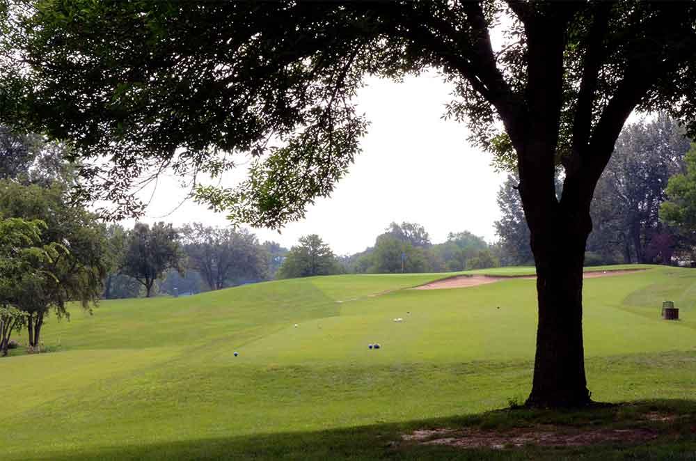 Lake-Saint-Louis-Golf-Course,-Tree