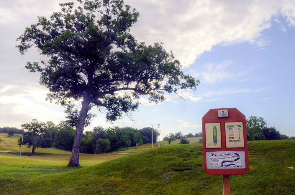 Meramec-Lakes-Golf-Course,-St-Clair,-MO-Tree
