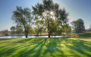 Mosswood Meadows Golf Course, Monroe City Golf Courses