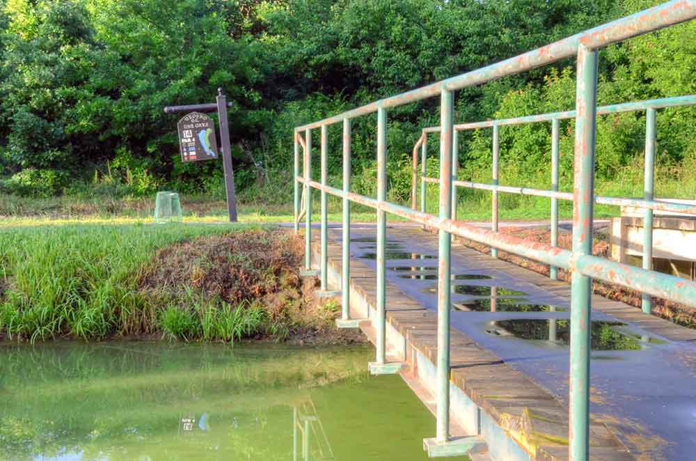 Neosho-Municipal-Golf-Course,-Neosho,-MO-Bridge