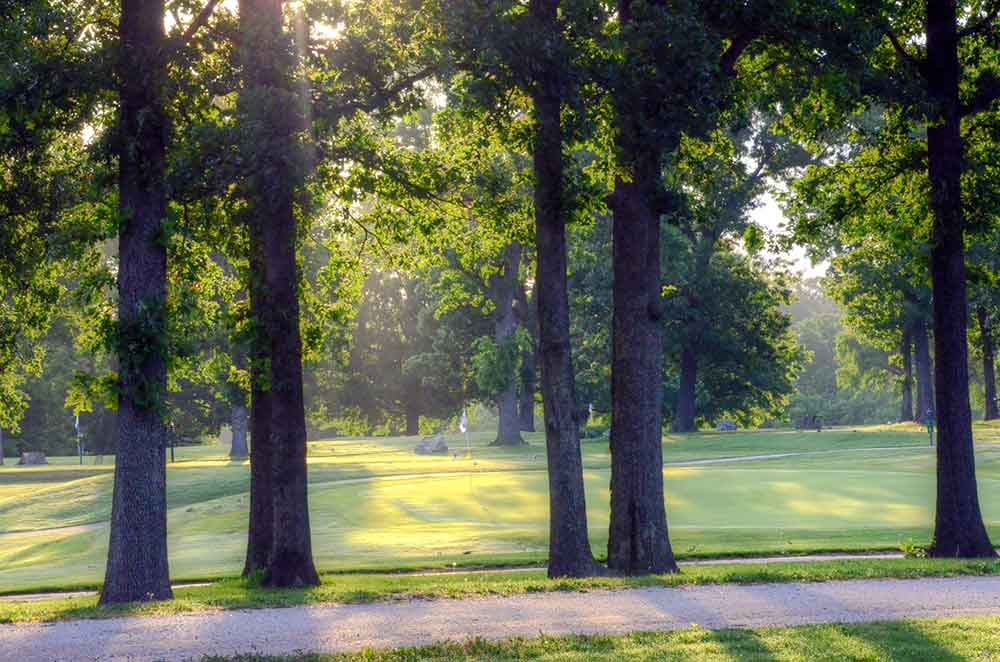Neosho-Municipal-Golf-Course,-Neosho,-MO-Trees