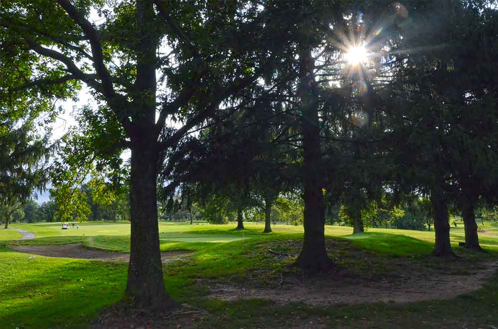 Normandie-Golf-Club,-St-Louis,-MO-Sunburst