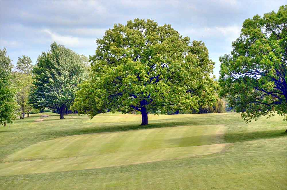 Oak-Hills-Country-Club,-Dixon,-MO-Hole3
