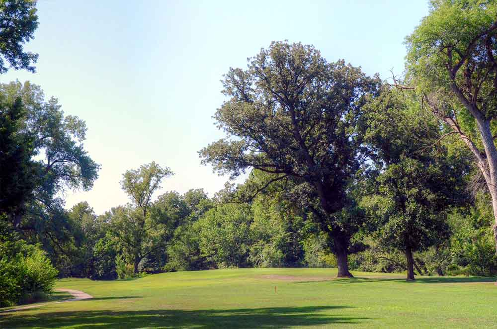 Rock-Port-Golf-and-Country-Club,-Rock-Port,-MO-Tree