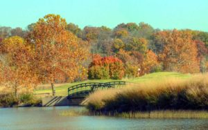 Tapawingo National Golf Club, Best Golf Courses in St. Louis, Missouri