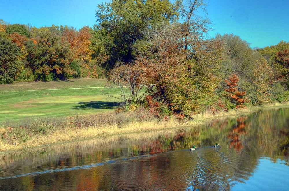 Teetering-Rocks-Golf-Course,-Ducks