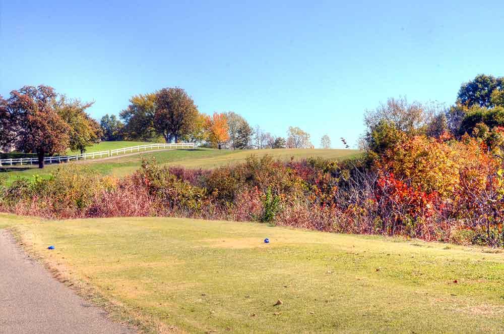 Teetering-Rocks-Golf-Course,-Weeds