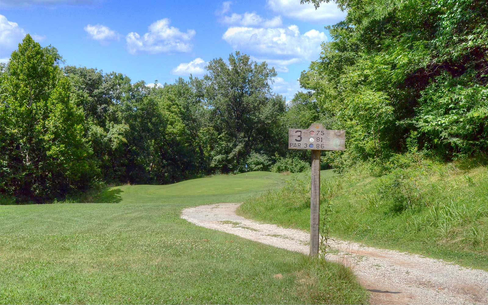 The-Athletic-and-Golf-Club-at-Maple-Creek,-Kansas-City,-MO-Hole-3
