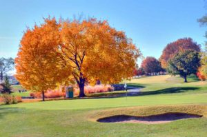 Highlands Golf and Tennis Center, Green and yellow tree during the Fall