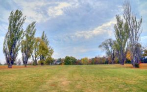 Vandalia Country Club | Best Golf Courses in Vandalia, Missouri