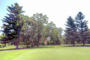 Wedgewood Country Club. Golf Courses in Cabool