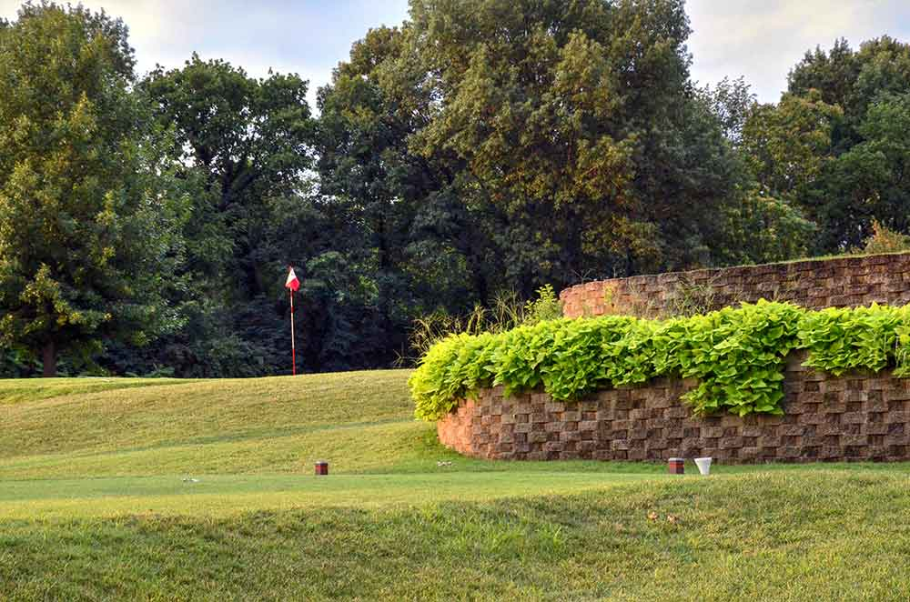 Westborough-Country-Club,-St-Louis,-MO-Plants